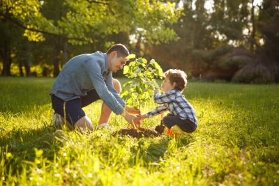 image of man and boy planting a tree